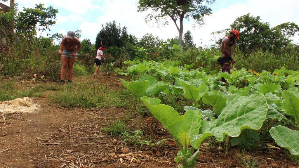 Momentos antes de iniciarmos a IV jornada de Agroecologia dos Povos em momento de encontro da Teia dos Povos e parceiros